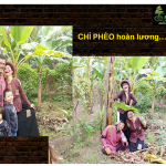 Du lịch Làng Vũ Đại – Mô hình du lịch văn học đầu tiên ở Việt Nam