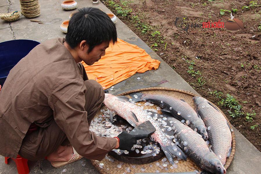 Đánh sạch vảy cá