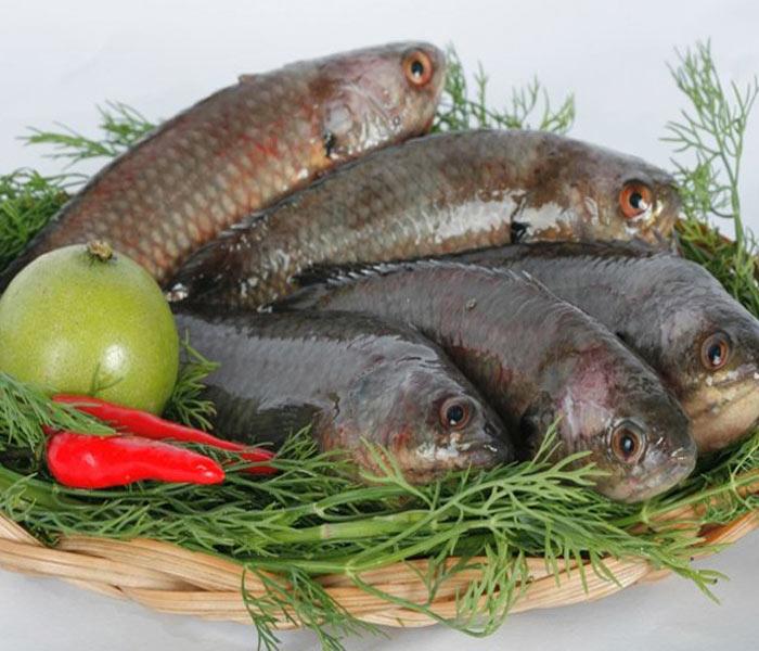 Chuẩn bị nguyên liệu kho cá