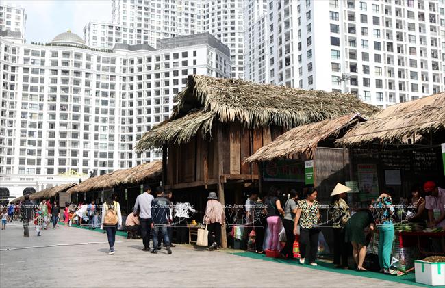 DASAVINA là đơn vị đồng hành cùng hội chợ Việt
