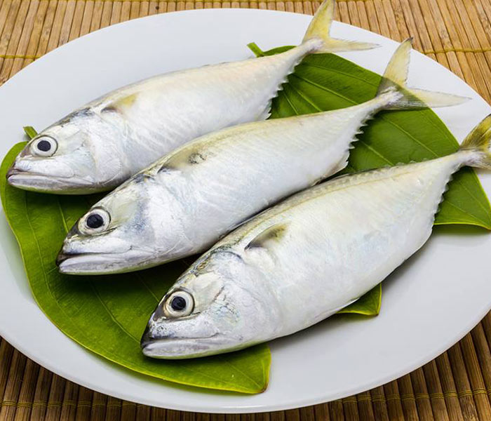Chọn cá bạc má tươi ngon cho những món ăn chất lượng