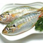 Cá bạc má nấu như thế nào ngon? Tác dụng của cá bạc má