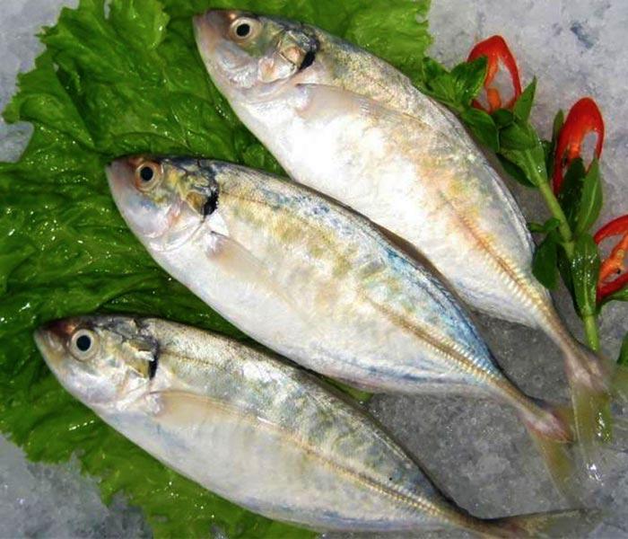 Cá bạc má tươi ngon, bổ dưỡng